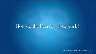 آناتومی و فیزیولوژی قلب
