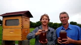 کندو های عسل هم هوشکمند می شوند