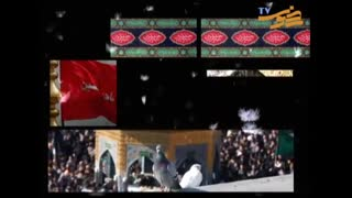 واویلا شهید علقمه(حاج محمود کریمی)