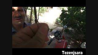 پیوند زدن نهال و درخت توسط محمودآقا احمدزاده