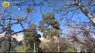 شیراز شهر چهار فصل