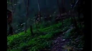 ویدئوی کاملا حقیقی از بشقاب پرنده ها و آدم فضایی در زمین(حتما ببینید)