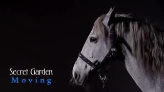 Secret Garden - Moving (از آلبوم داستانهای خیالی)