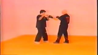 وینگ چون- تکنیک های مبارزه پیشرفته ویکتور گوتیه رز - سری آلبوم های آموزشی هنرهای رزمی و دفاع شخصی کوثرپرداز