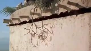 حبیب و سمیر-محکوم -کلیپ سینمایی( با فیلمهای مختلف)