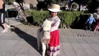 یک ویدیو فوق العاده | ماجراجویی | انگیزشی | سفر دنیا