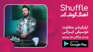 آهنگ جدید صالح صالحی به نام ببین هوا رو